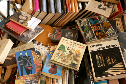 A bunch of used books at the Barcelona market - MyVideoimage.com