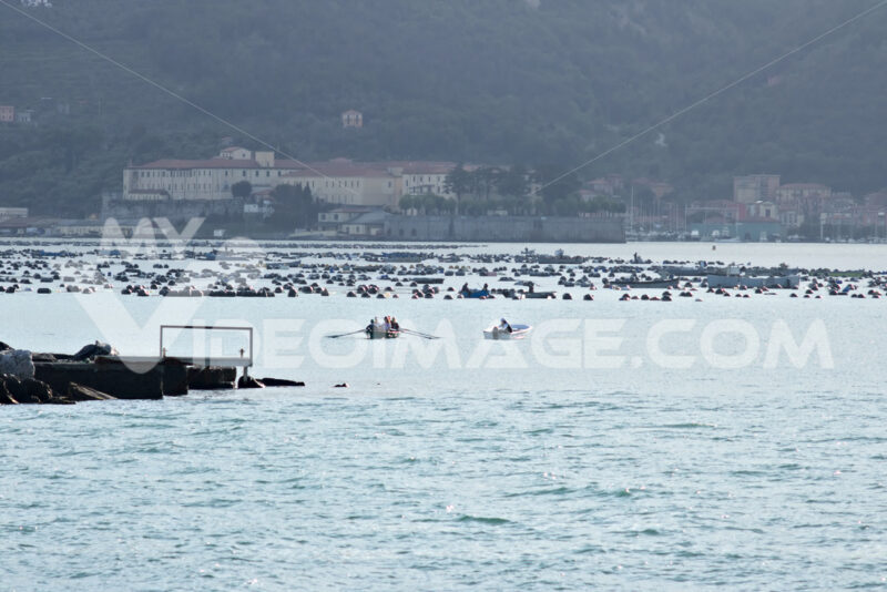 A motor boat and a rowing boat enter the port of La Spezia. - MyVideoimage.com