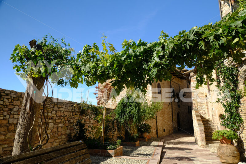 Alley of the city of Assisi with stone facades of historic houses. Arbor with climbing vine plant and flags on the walls of buildings. - MyVideoimage.com