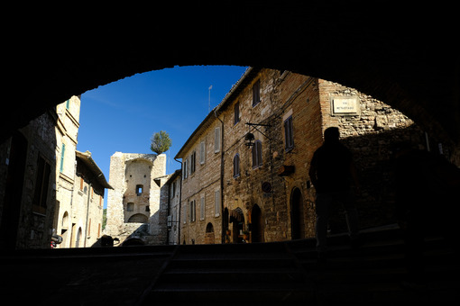 Ancient street of Assisi with an olive tree above a city gate. A brick arch covers an alley. - MyVideoimage.com