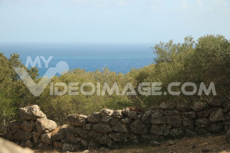 Archaeological park of the ancient city of Cosa, near Ansedonia. - MyVideoimage.com