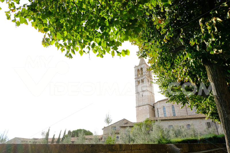 Bell tower of the church of Santa Chiara in Assisi. 	In the foreground the green leaves of a tree. - MyVideoimage.com