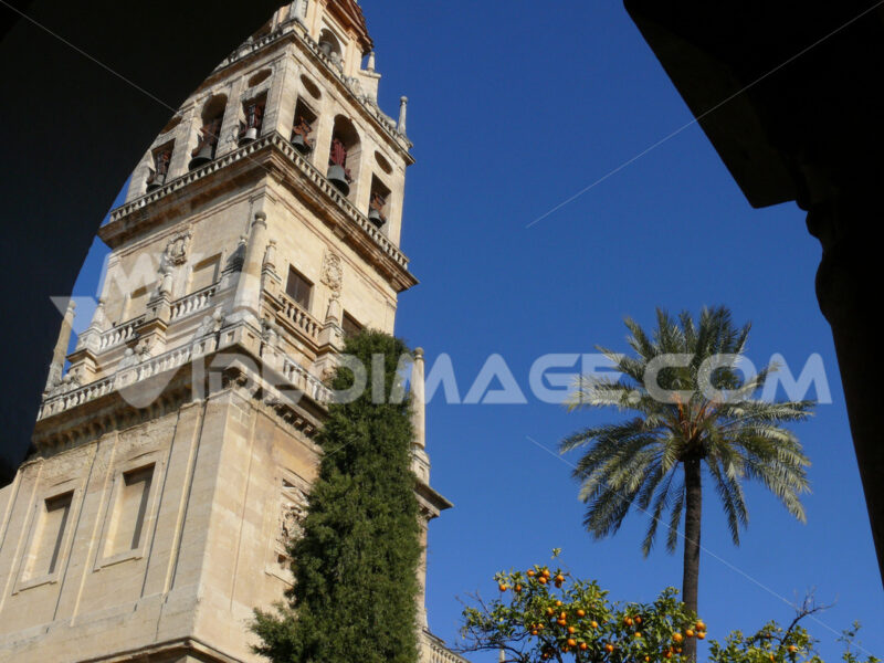 Bell tower of the mosque-cathedral. Foto Siviglia. Sevilla photo
