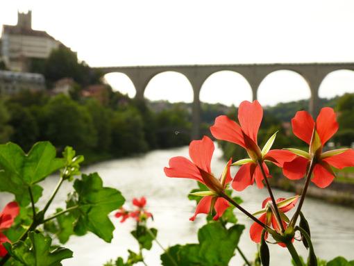 Berne Gate Bridge - MyVideoimage.com