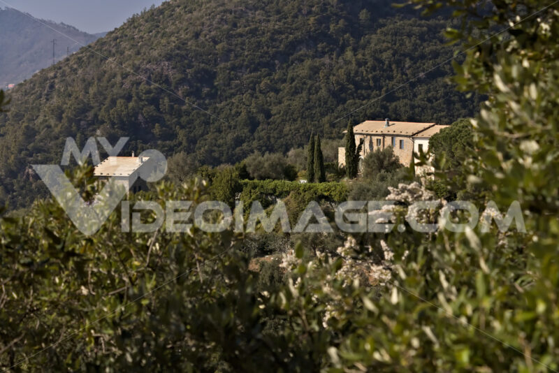 Bonassola, near Cinque Terre. 03/31/2019. A typical Ligurian house - MyVideimage.com
