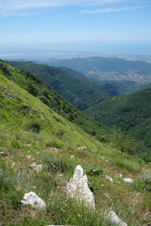 Camaiore landscape. Panorama of Versilia with the cities of Camaiore and Viareggio. Stock photos. - MyVideoimage.com | Foto stock & Video footage