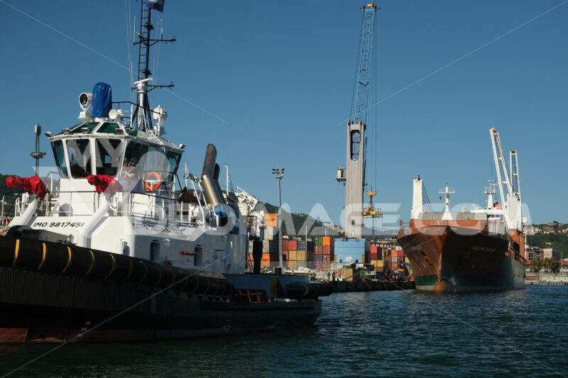 Cargo ship loading at the port of La Spezia. In the foreground a tugboat. Foto navi. Ships photo.