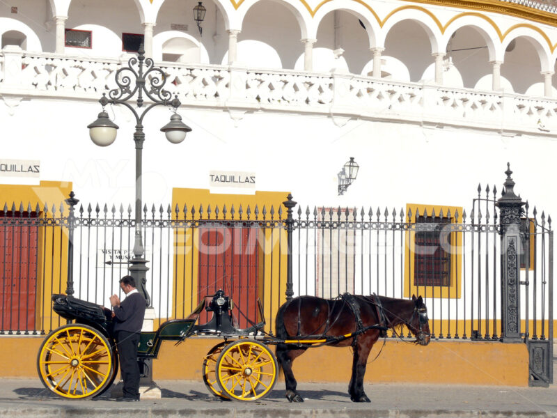 Carriage with horse and coachman. Foto Siviglia. Sevilla photo