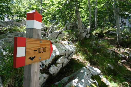 Cave signpost. Signpost of a mountain path in the Apuan Alps. Stock photos. - MyVideoimage.com | Foto stock & Video footage