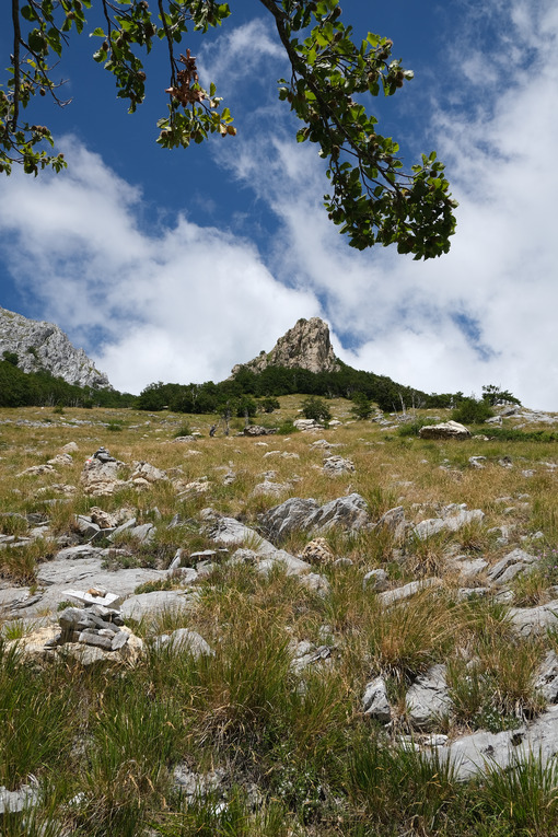 Cima della montagna. Apuan Alps mountains in Tuscany, green vegetation and blue sky with clouds. Foto stock royalty free. - MyVideoimage.com | Foto stock & Video footage