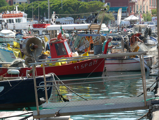 Colorful fishing boats moored at the harbor. - MyVideoimage.com