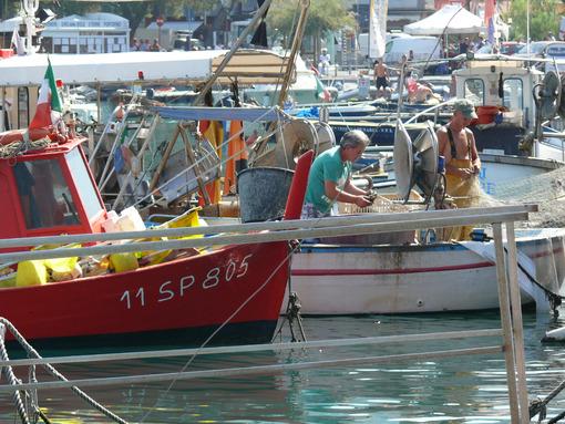 Colorful fishing boats moored at the harbor. Foto mare e pescatori. Sea pictures - LEphotoart.com