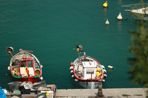 Colorful fishing boats moored at the harbor. View from above. - MyVideoimage.com