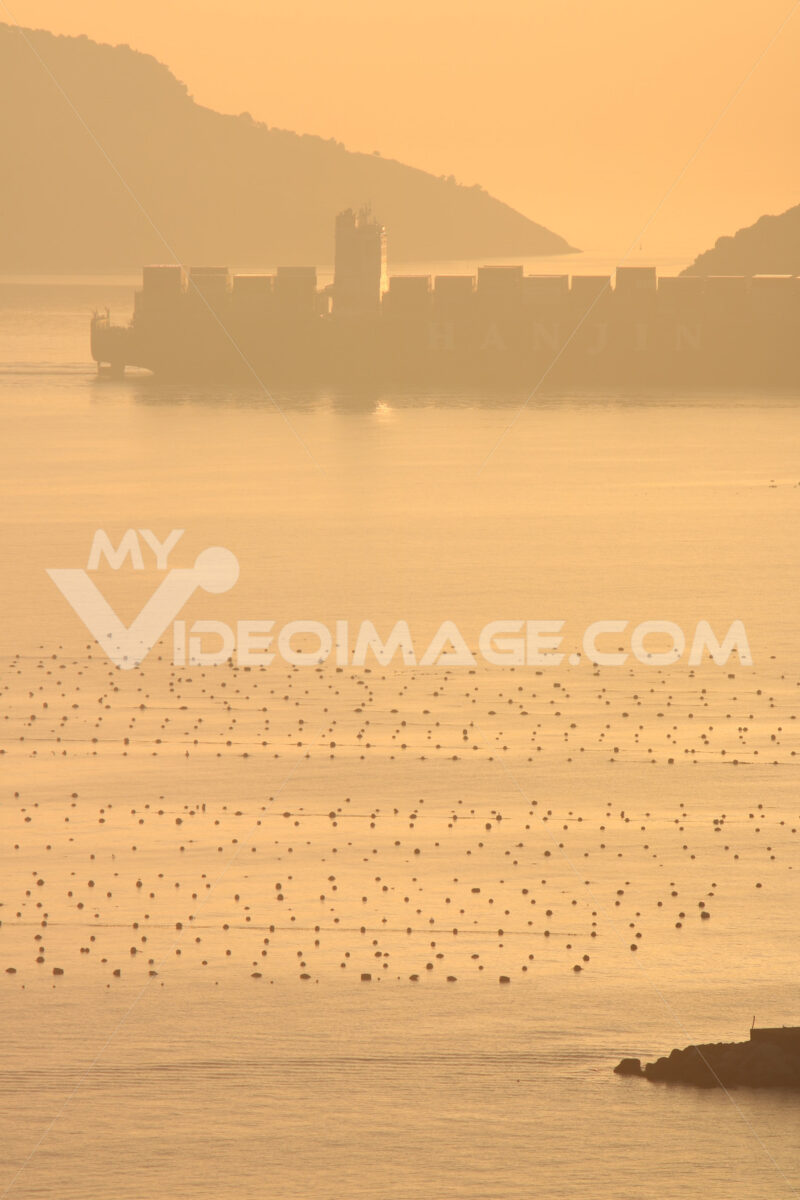 Container ship crosses the sea in the Gulf of La Spezia in front of Portovenere. Warm light of the setting sun. Floats from mussel farms. - MyVideoimage.com