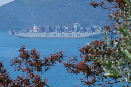 Container ship in the gulf of La Spezia in Liguria. Trees on the hills overlooking the Ligurian sea. Navi - LEphotoart.com