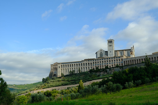 Convent and church of San Francesco in Assisi. The architecture immersed in the countryside with cultivation of olive trees. - MyVideoimage.com | Foto stock & Video footage