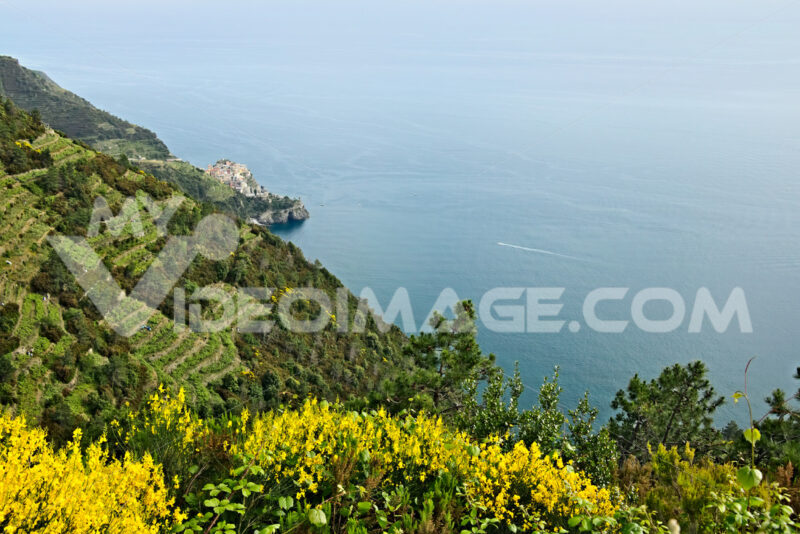 Corniglia to the Cinque Terre. Seascape at sunset time. - MyVideoimage.com
