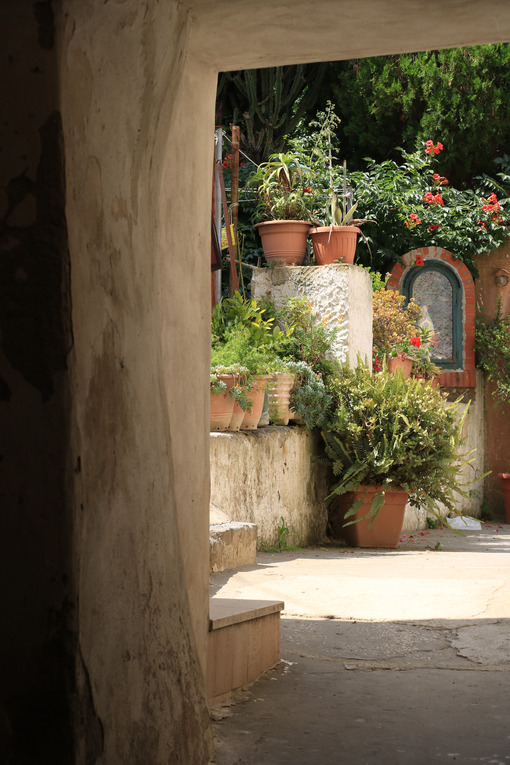 Cortile con giardino. Courtyard of a Mediterranean garden on Procida Island. Red flowers of bignonia. and marble bathtub. - MyVideoimage.com | Foto stock & Video footage