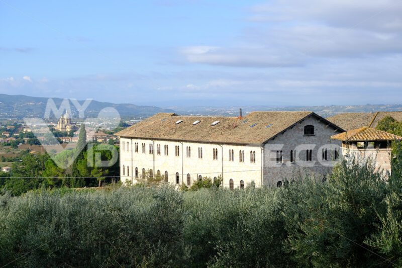 Countryside around Assisi. Religious buildings and an olive plantation. - MyVideoimage.com | Foto stock & Video footage