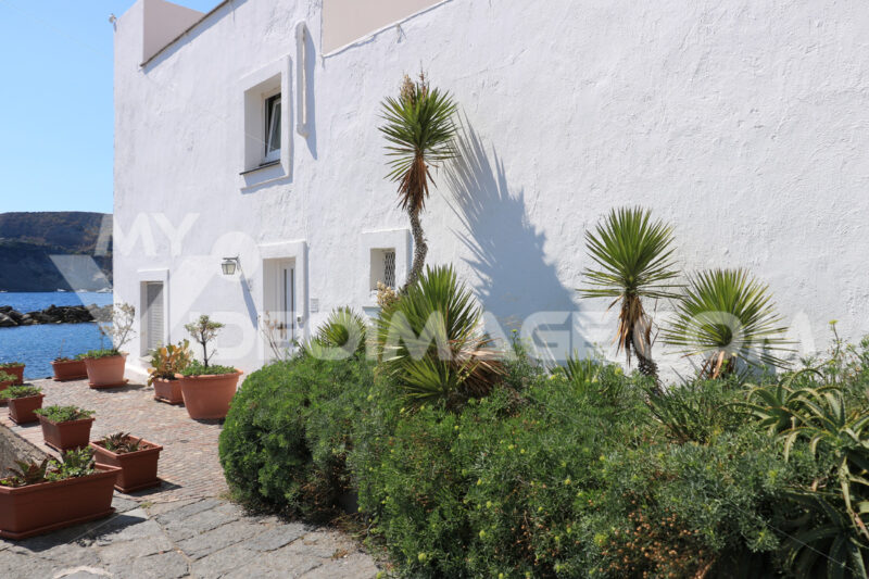 Courtyard and garden of a Mediterranean style house with whitewa - MyVideoimage.com