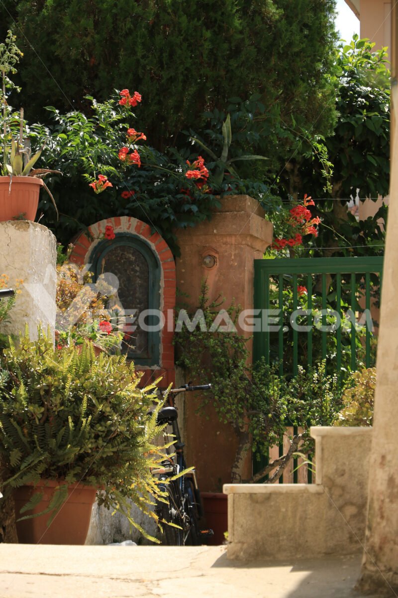 Courtyard of garden. Courtyard of a Mediterranean garden on Procida Island. Red flowers of bignonia. and marble bathtub. - MyVideoimage.com | Foto stock & Video footage