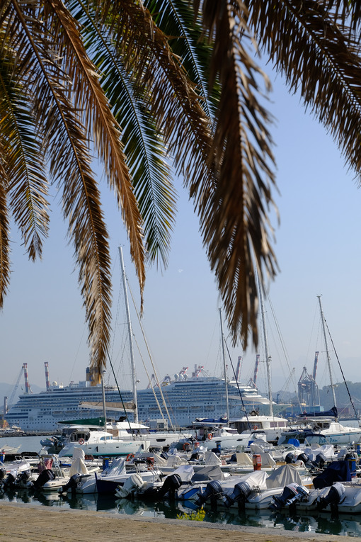 Cruise ship and boats in the marina. - MyVideoimage.com | Foto stock & Video footage