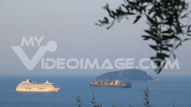 Crystal Serenity cruise ship and container ship with olive leaves. The Gulf in the Mediterranean Sea with Islands in the background light of dawn. - MyVideoimage.com | Foto stock & Video footage