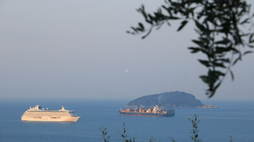Crystal Serenity cruise ship and container ship with olive leaves. The Gulf in the Mediterranean Sea with Islands in the background light of dawn. - LEphotoart.com