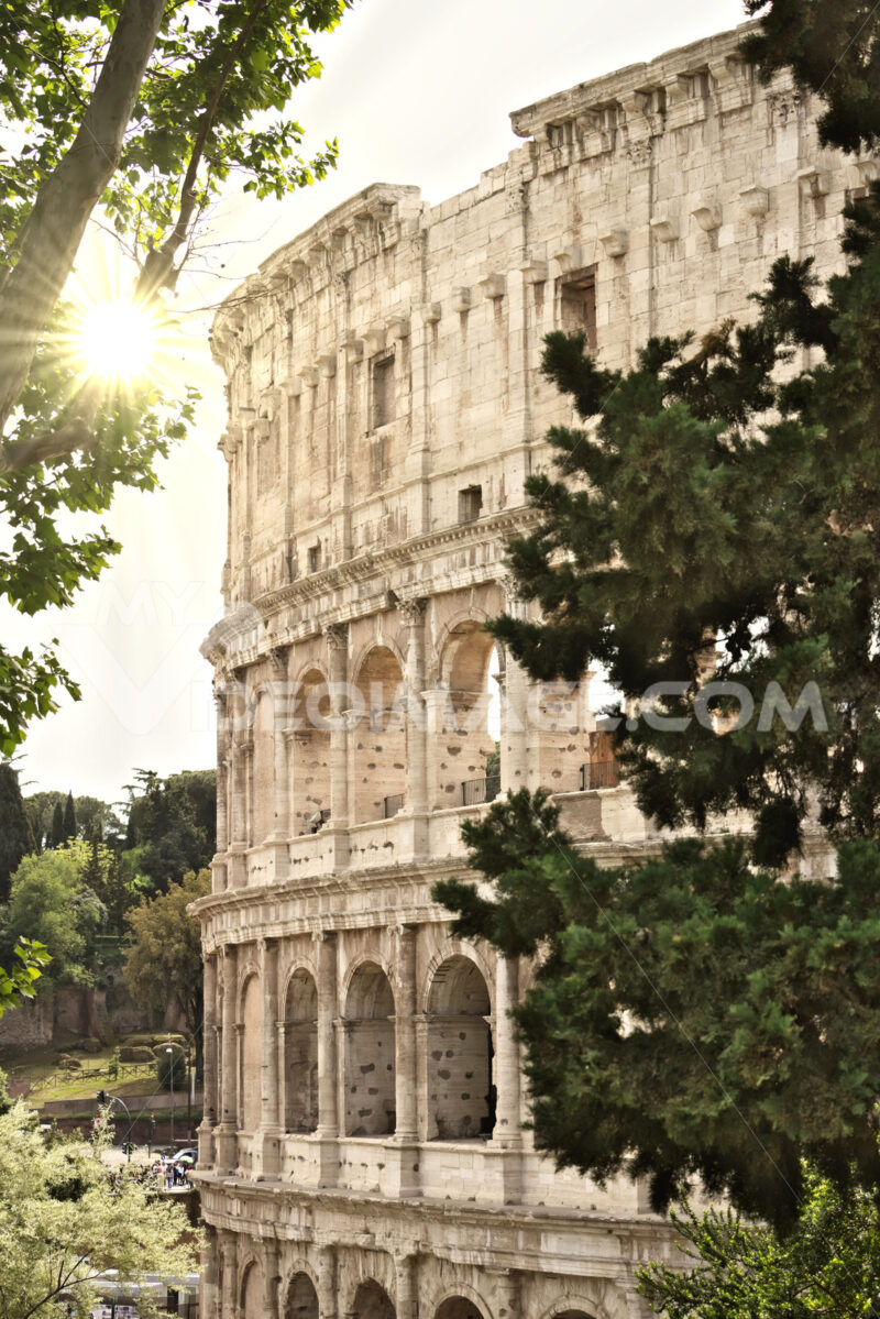 Detail of the Colosseum also called the Flavian Amphitheater. - MyVideoimage.com
