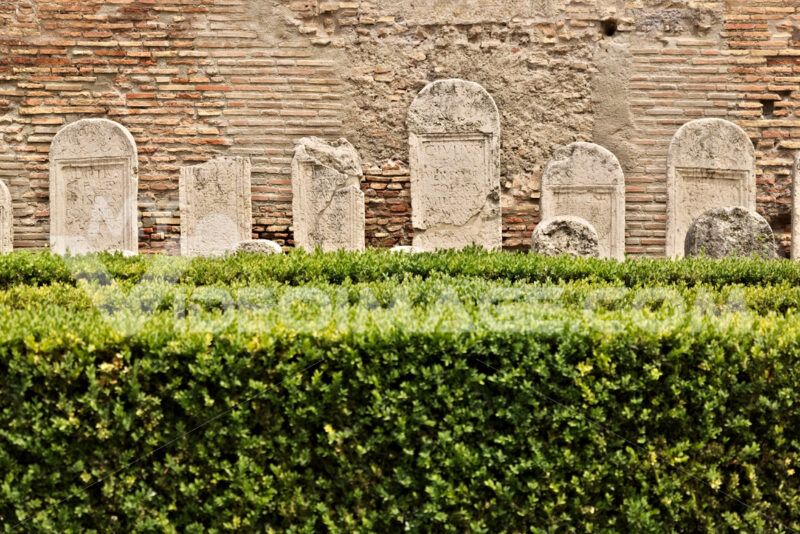 Garden with boxwood hedges and Roman tombstones in white marble. - MyVideoimage.com
