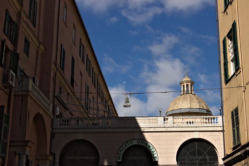 Genoa. The eastern market. - MyVideoimage.com