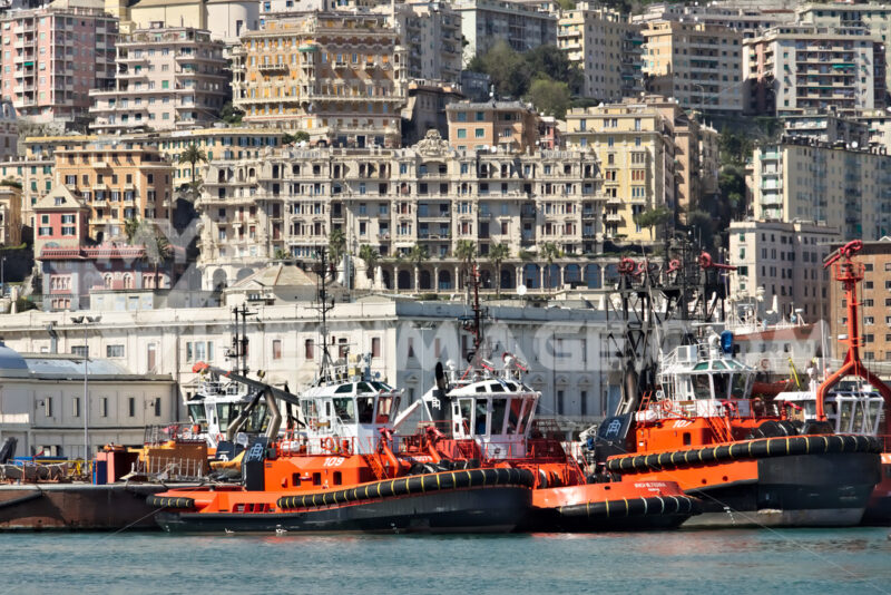 Genoa. Yachts and tugs at the ancient port. - MyVideoimage.com | Foto stock & Video footage