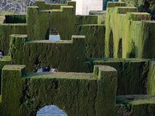 Geometrically cut hedges in the garden of the Alhambra - MyVideoimage.com