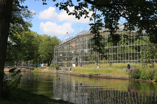 Greenhouse in the botanical garden of Amsterdam. An ancient bota - MyVideoimage.com | Foto stock & Video footage