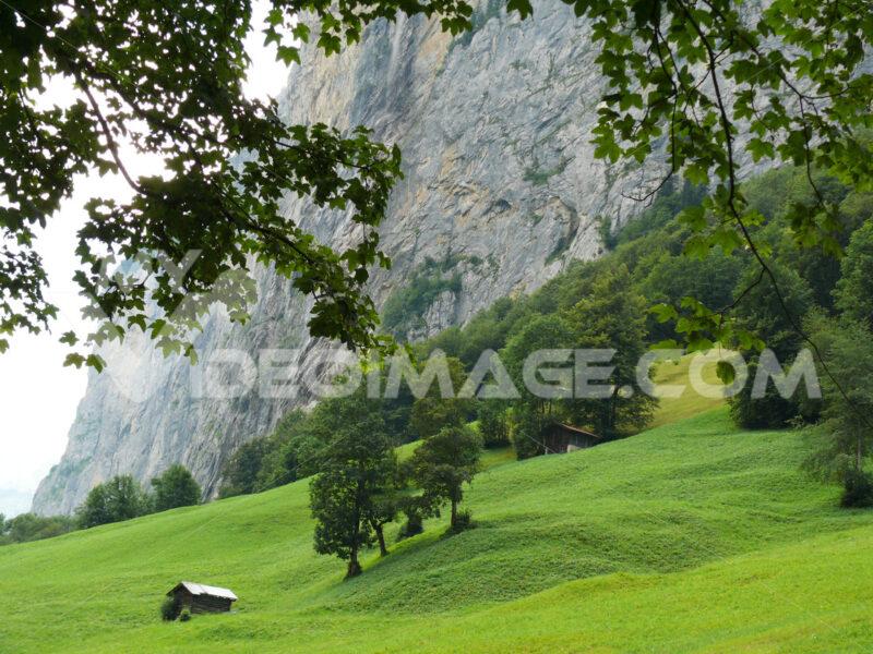 Grindelwald.Switzerland. Alpine landscape. Foto Svizzera.