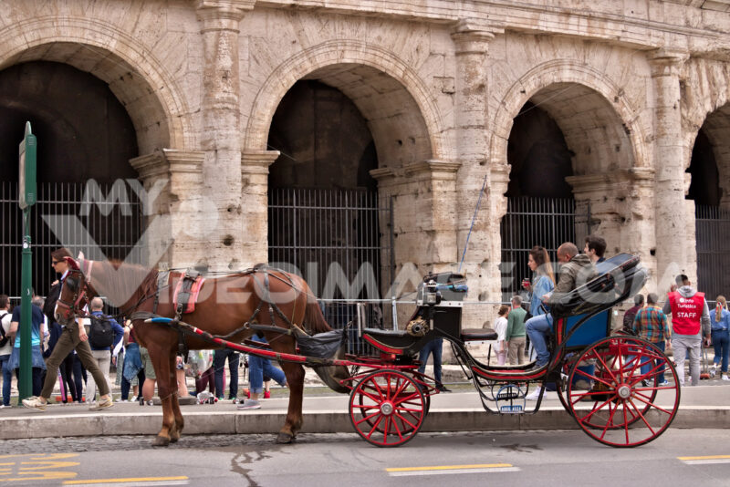 Horse with buggy in front of the colosseum. Driver waiting for tourists for a ride in the city streets. - MyVideoimage.com | Foto stock & Video footage