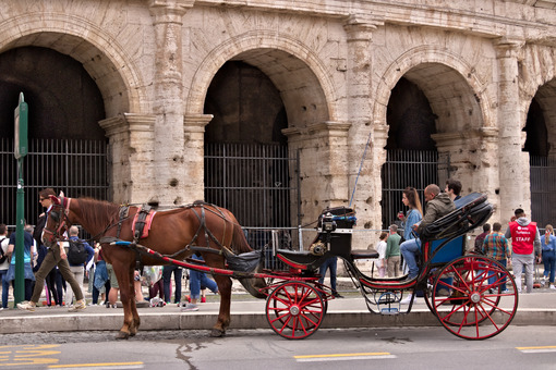 Horse with buggy in front of the colosseum. Driver waiting for tourists for a ride in the city streets. - MyVideoimage.com