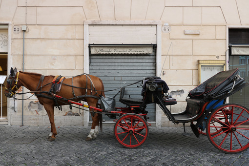 Horse with buggy stopped in a square in Rome. - MyVideoimage.com