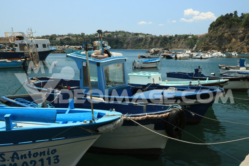 Isole golfo di Napoli. Boats anchored in the port of Corricella on the Island of Procid - MyVideoimage.com | Foto stock & Video footage