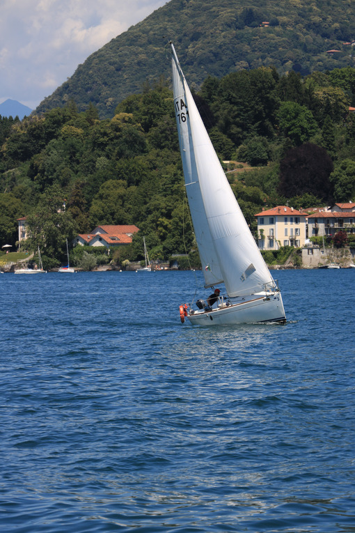 Lake Maggiore. Italy. About  June 2019. Sailing boat on Lake Mag - MyVideoimage.com