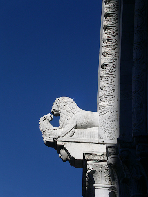 Lucca, Tuscany, Italy. White marble decorations at the Duomo. - MyVideoimage.com
