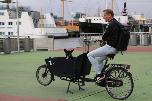 Man and black dog on a bicycle await the ferry. - MyVideoimage.com