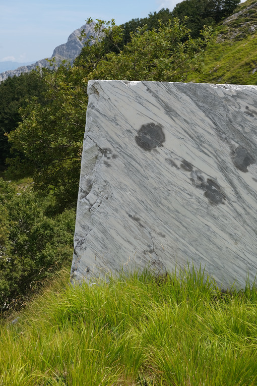 Marble block on the lawn. Block of white veined marble resting on a green lawn in the Apuan Alps. Stock photos. - MyVideoimage.com | Foto stock & Video footage