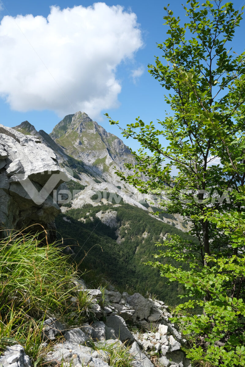 Marble mountain. Mountains of the Apuan Alps between Monte Pisanino and Monte Cavallo. Stock photos. - MyVideoimage.com | Foto stock & Video footage