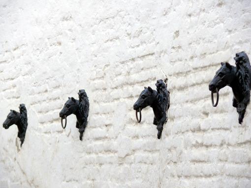 Metal horse heads. - MyVideoimage.com