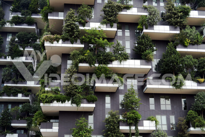 "Milan 9 June 2018. The towers of the ""Vertical Forest"" designed by the architect Stefano Boeri's studio. - MyVideoimage.com"