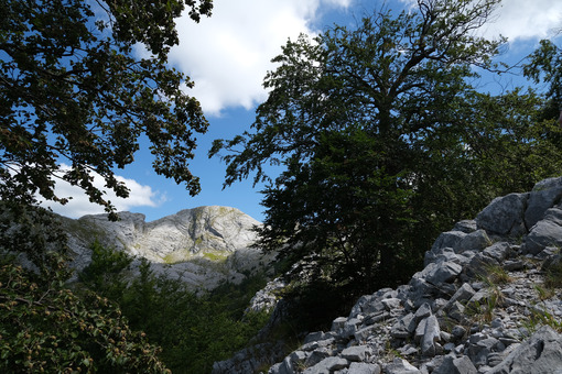 Montagne Toscana. Mountains of the Apuan Alps between Monte Pisanino and Monte Cavallo. Foto stock royalty free. - MyVideoimage.com | Foto stock & Video footage