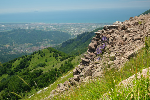 Monte Matanna. Versilia panorama from Monte Matanna, Alpi Apuane. Stock photos. - MyVideoimage.com | Foto stock & Video footage