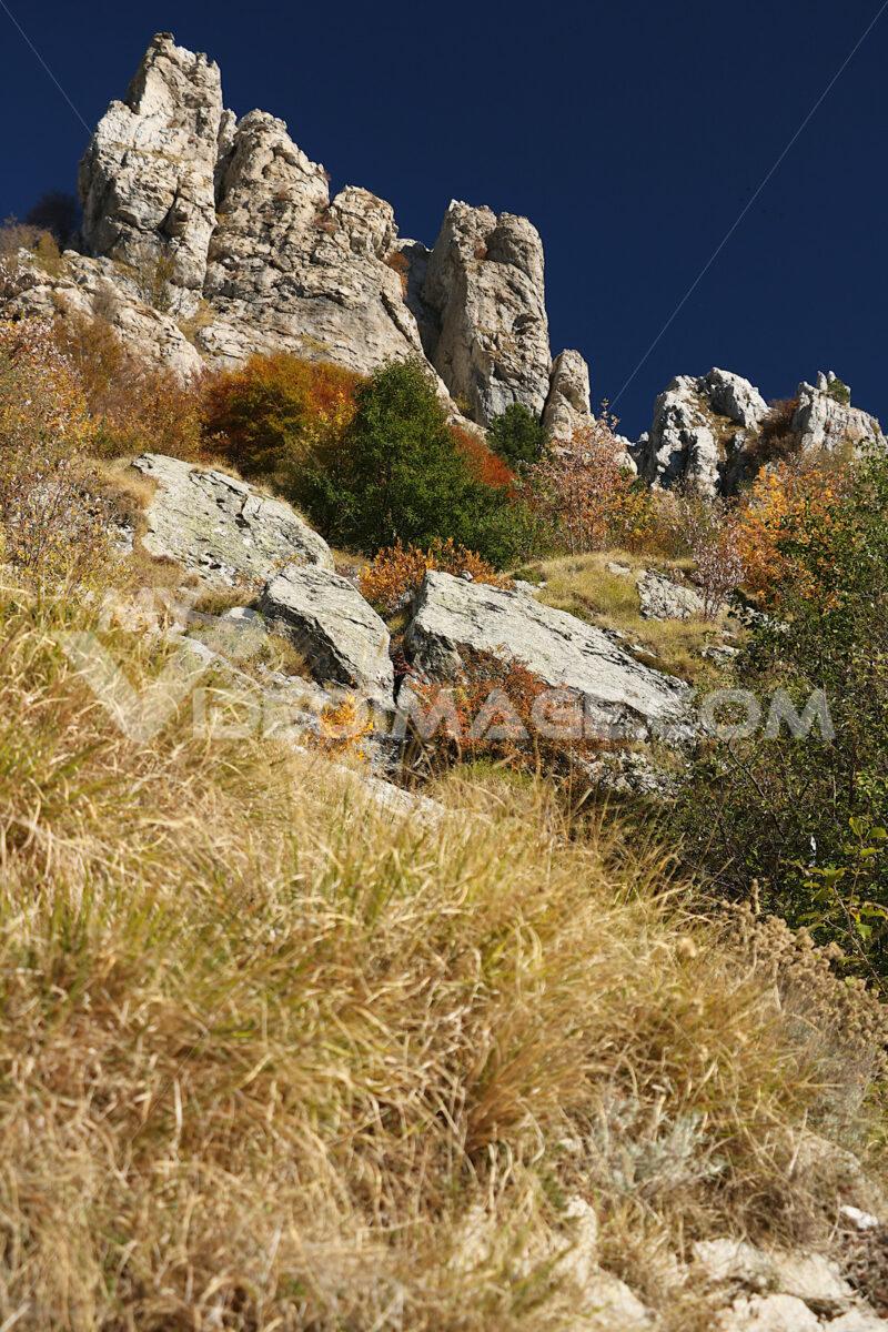 Mountain colors. Alpi Apuane. Tuscany. Alpi Apuane, Massa Carrara, Tuscany, Italy. Autumn vegetation. - MyVideoimage.com | Foto stock & Video footage