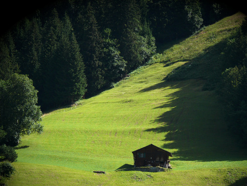 Mountain hut in green meadow. - MyVideoimage.com